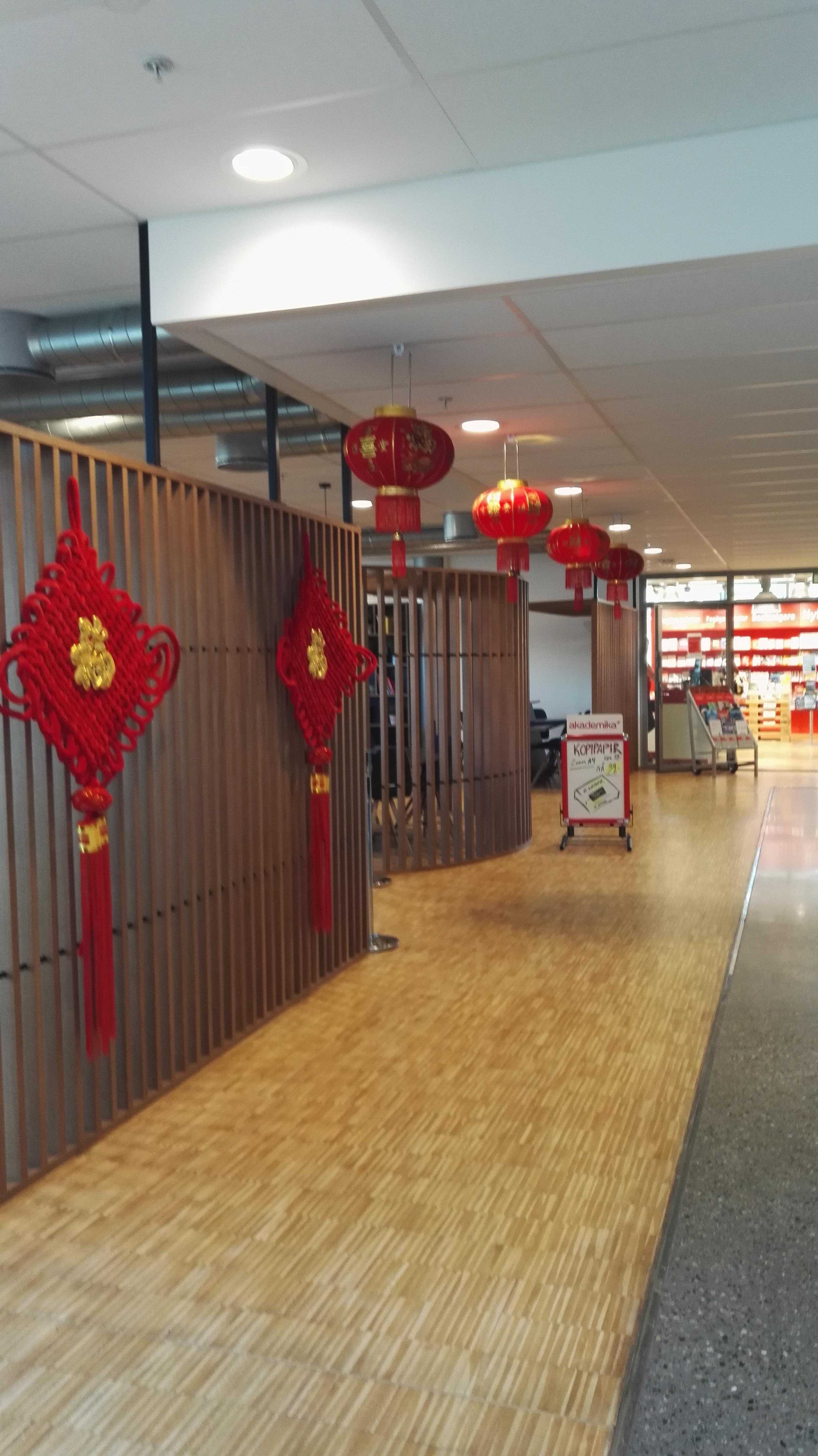 China Day hos BI